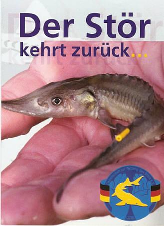 Gr nes netz oste for Heimische teichfische