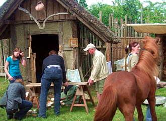 schwein an mittelalterlichen bauwerken